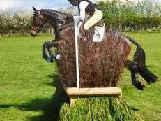 Ideal young riders eventer
