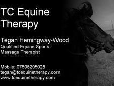 TC Equine Therapy- Equine Sports Massage