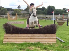 Wanted 13.1-14.2 showjumping pony