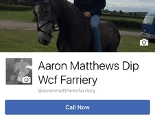 Aaron Matthews DipWcf registered farrier