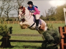 12.2hh CHUNKY coloured cob  for loan/share/LWVTB