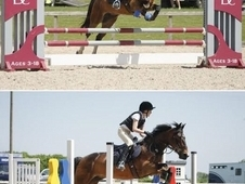 14. 1hh talented allrounder