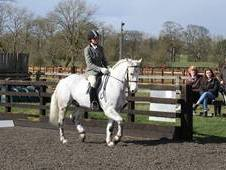 **FUN 14. 2HH ALL-ROUNDER**