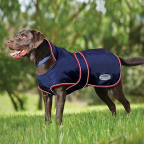 Weatherbeeta - Windbreaker 420D with Belly Wrap Dog Rug
