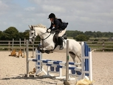 Attractive Hunter RC Eventer