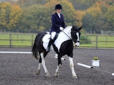 Riding club /. All rounder
