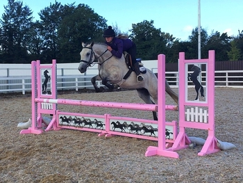 15.hh eventing prospect!!