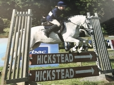 Proven Pony Club All Rounder