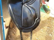 Sue Carson Harmony Dressage 16. 5in Black