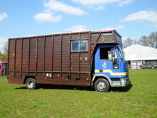 1998 ford iveco horsebox
