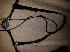 Black cob size running martingale