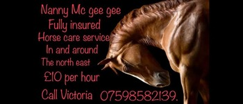 Nanny mc gee gee horse care services .