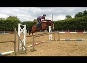 16.1hh jumping machine in KENT