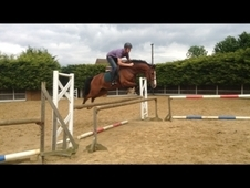 16. 1hh jumping machine in KENT