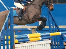 FANTASTIC EVENTER/ ALL ROUNDER