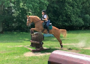 Stunning allrounder with major BE Prospect
