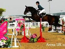 Super Amateurs Grade B Showjumper *Reduced as must sell due to la...