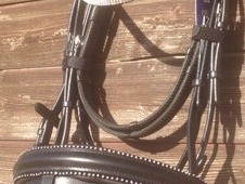 English comfort flash bridle