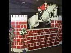 *BRILLIANT COMPETITION PONY FOR SALE WITH GREAT POTENTIAL*