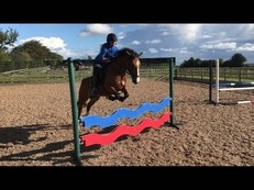 Super jumping pony