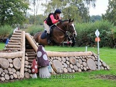 Super fun jumping cob