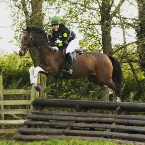 Sharer Wanted For my 15.3hh forward happy mare. No yard duties! North Oxfordshire / Northamptnshire