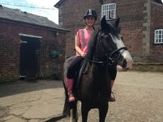 STUNNING 14.1hh MARE sold to 5* forever home