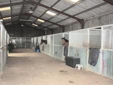 8 Stables to Rent in Selfcontained Yard Near Basingstoke