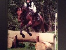 Pony Club/Riding Club/Eventer