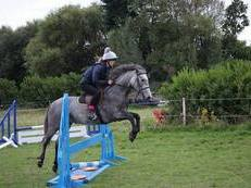 SUPER ALLROUND PONY