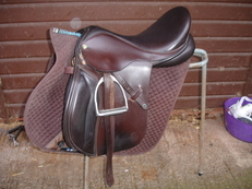 Ideal GP Saddle 17.5""