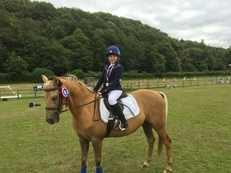 ** SOLD ** 13.1hh, Welsh X, 13 y.o Palomino Gelding