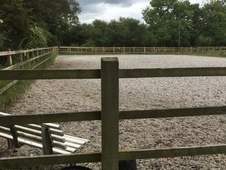 Livery Vacancies at Broadbridge Farm Stables