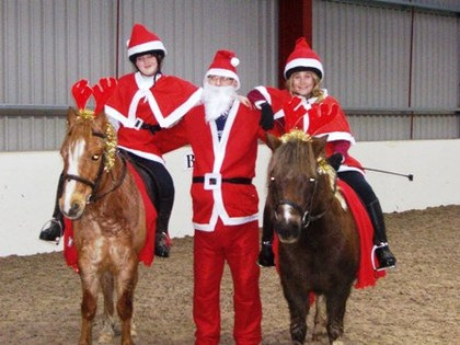 Muffin and polo all dressed up for the pairs christmas dressage to