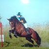 Jumping a ditch - no problems! (Larkhill)