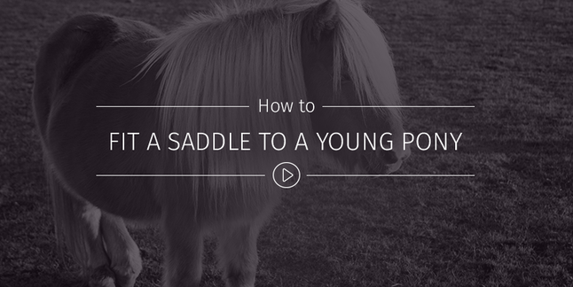How To Fit A Saddle To A Young Pony