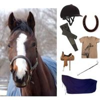How to Buy Horse Equipment Online