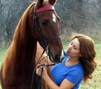 Best Equine Careers: Horse Trainer