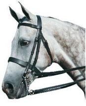 A guide to show bridles