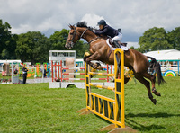 Where to see British Show Jumping