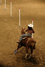 Train Your Horse to Pole Bend