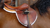 Breaking in an English Horse Saddle