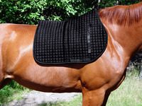 13 steps to making a saddle pad