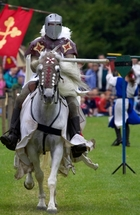 How to Train Your Horse for Jousting Clubs