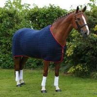 How to Make Use of Horse Rugs
