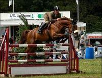 Top Show Jumping Events