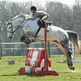 British showjumping competitions