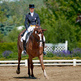 A beginner's guide to British Dressage