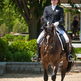 How to qualify for British Dressage championships