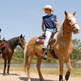 How to get a job in equine tourism